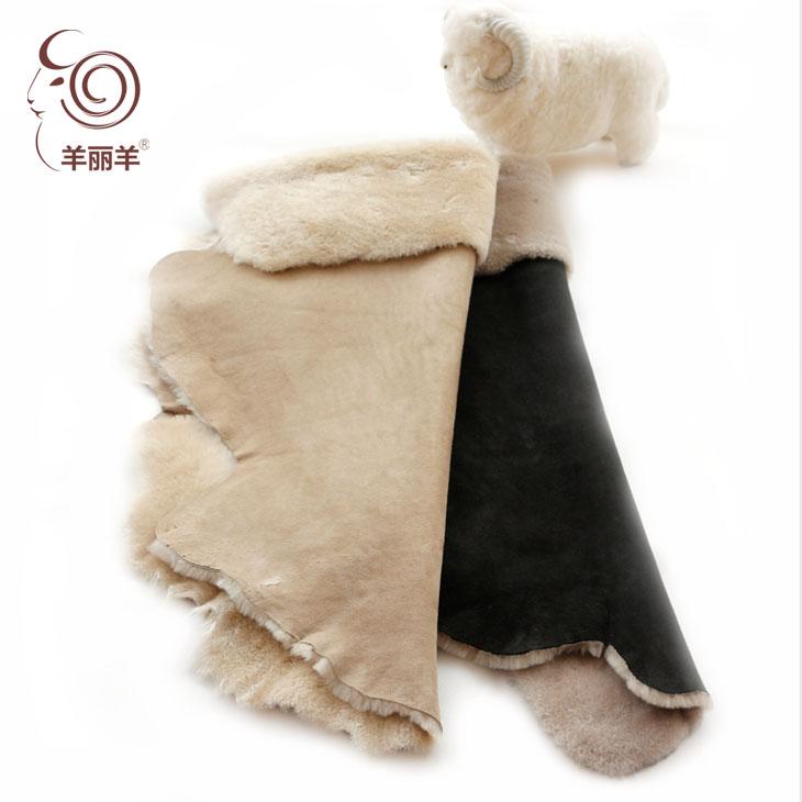 【羊丽羊】土种羊毛卷花